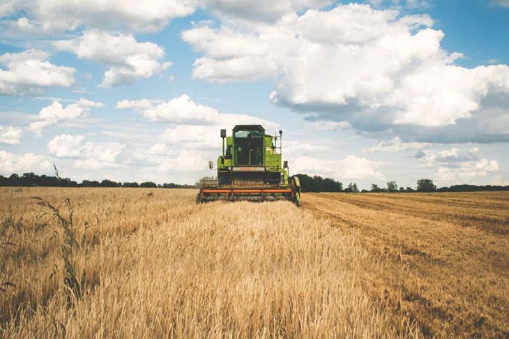 Es conveniente contar con un seguro agrario que cubra los daños que el viento, la lluvia o el granizo puedan ocasionar.
