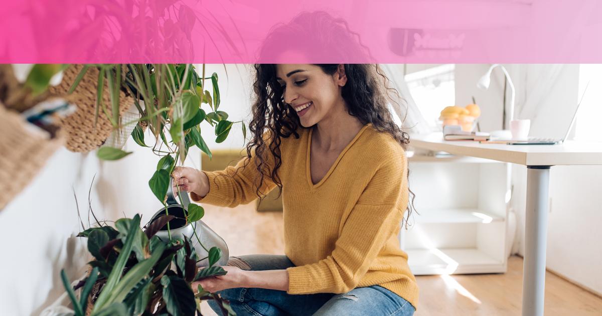 beneficios de dormir con plantas en la habitacion